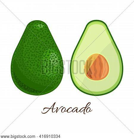 Avocado Vector Icon.cartoon Vector Icon Isolated On White Background Avocado.