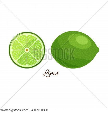 Lime Vector Icon.cartoon Vector Icon Isolated On White Background Lime.
