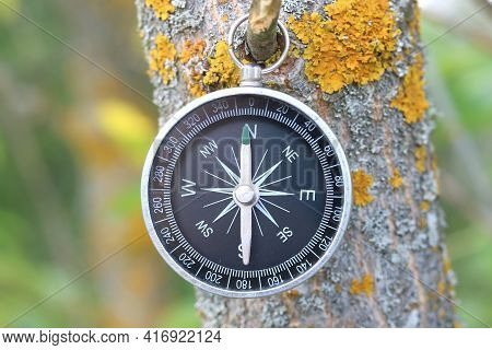 Classic Navigation Compass On Natural Background As Symbol Of Tourism With Compass, Travel With Comp