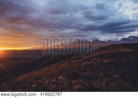 Atmospheric Landscape With Silhouettes Of Mountains With Pink Flowers On Hill On Background Of Dawn