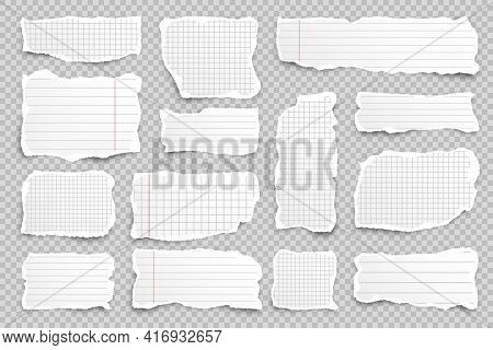 Ripped Paper Strips On Transparent Background. Realistic Crumpled Paper Scraps With Torn Edges. Line