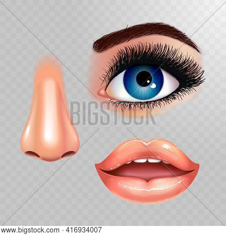 Set Of Beautiful Female Eye With Extended Eyelashes, Nose And Shining Mouth With Glossy Lips. Checke