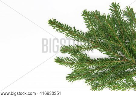 Natural Green Needles On A Fluffy Branch Of A Christmas Tree Or Pine Tree, Isolated On A White Backg