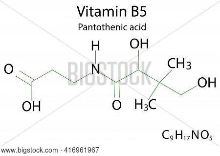 Flat Icon With Vitamin B 5 For Lifestyle Design. Health Care. Vitamin B 5 Formula. Stock Image. Vect