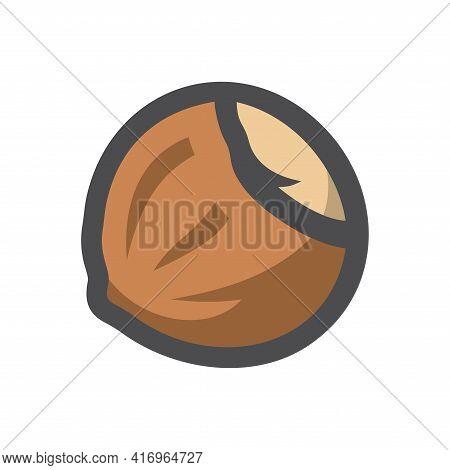 Hazelnut Brown Seed Vector Icon Cartoon Illustration.