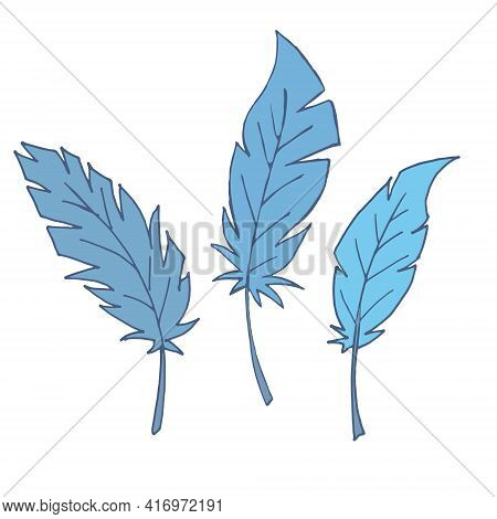 Set Of Feathers. Isolated Feathers On A White Background. Outline Illustration. Vector. Blue Feather
