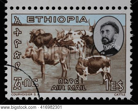 ZAGREB, CROATIA - SEPTEMBER 18, 2014: Stamp issued in the Ethiopia shows portrait of emperor Haile Selassie and Cattle (Bos primigenus taurus) with the inscription in amharic, circa 1965