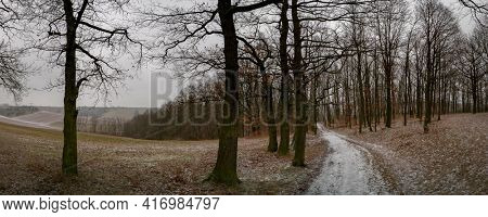 Landscape with an earth road between agricultural fields. Covered by first snow