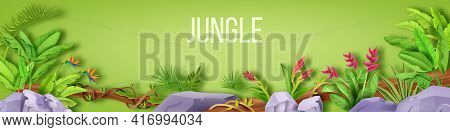 Jungle Vector Border, Forest Frame, Tropical Leaf Background, Stone, Fern, Liana, Flowers On Green.