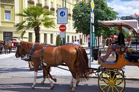 KARLOVY VARY CSZECH REPUBLIC - JULY 19: Horse carriage on a street in Karlovy Vary