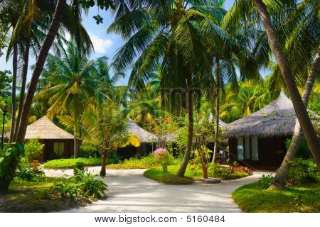 Bungalows And Pathway, Flowers And Trees