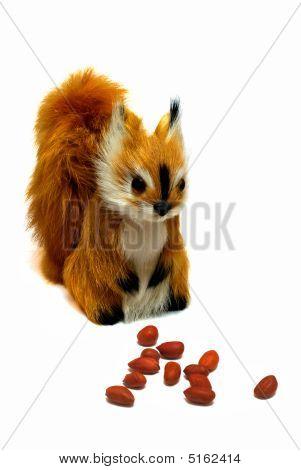 Squirrel And Peanuts