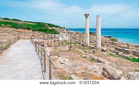 Columns And Sea