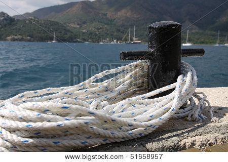 White sailor line