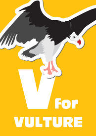 V For The Vulture, An Animal Alphabet For The Kids