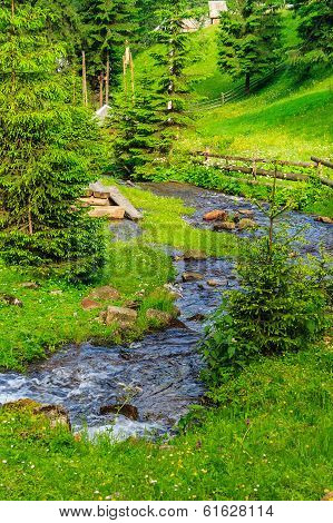 Narrow Stream With Rocks In Forest Lawn