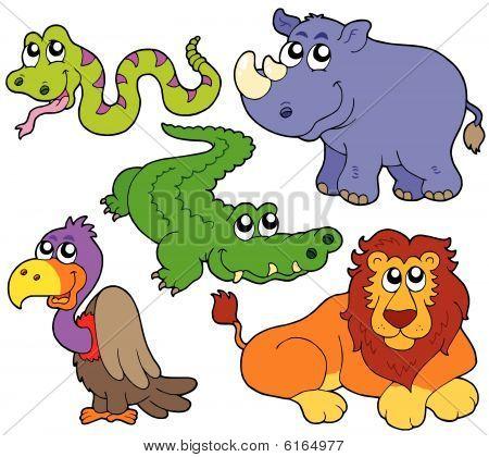 Wildlife cute animals collection