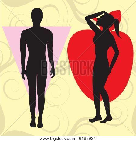 Apple Cone Body Type