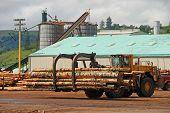 Log loader working a lumber mill logging truck reciving yard in Roseburg Oregon poster