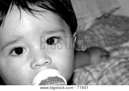Babies- Close Up