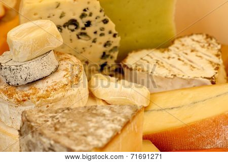 Various types of cheese composition macro close-up poster