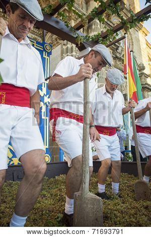 Traditional Grape Stomp In Sherry