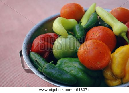 Fresh organic vegtables in a colander on a picnic blanket
