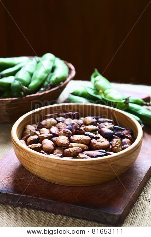Roasted broad beans (lat. Vicia faba) eaten as snack in Bolivia in wooden bowl with fresh broad bean pods in the back photographed with natural light (Selective Focus Focus one third into the roasted beans) poster