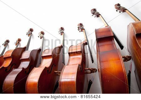 Row Of Double Basses Against A Wall