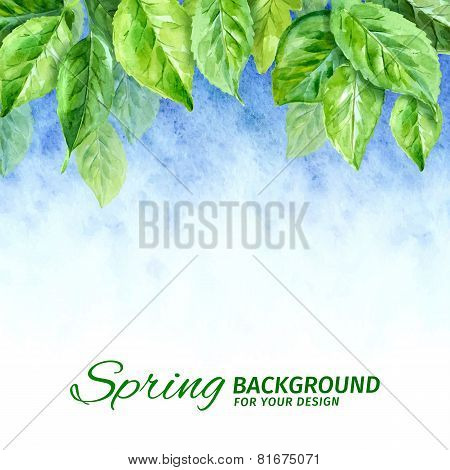 Vector illustration of spring leaves. watercolor background
