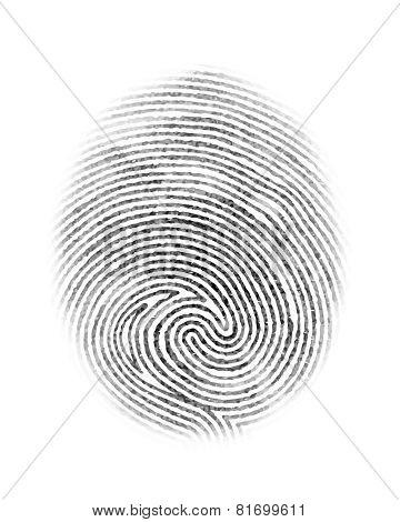 Fingerprint Isolated Illustration