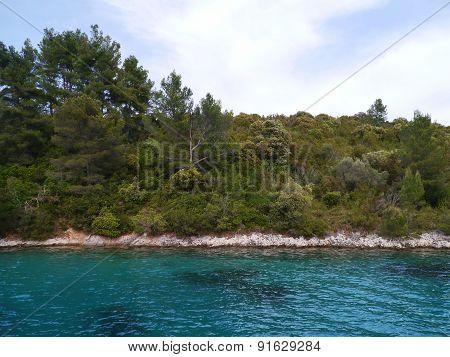 Lovisce bay of Scedro