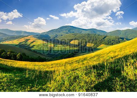 Agricultural Fields In Mountains