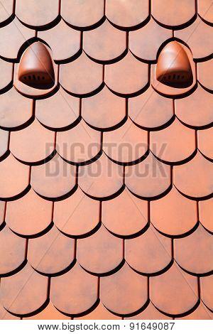 Roof Tile Pattern Orange