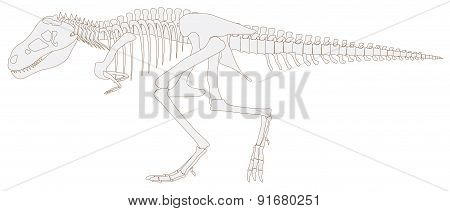 Tyrannosaurus Rex Dinosaur Fossil Graphic Design In Isolated Background, Create By Vector