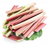 Rhubarb stalks on a white background. poster