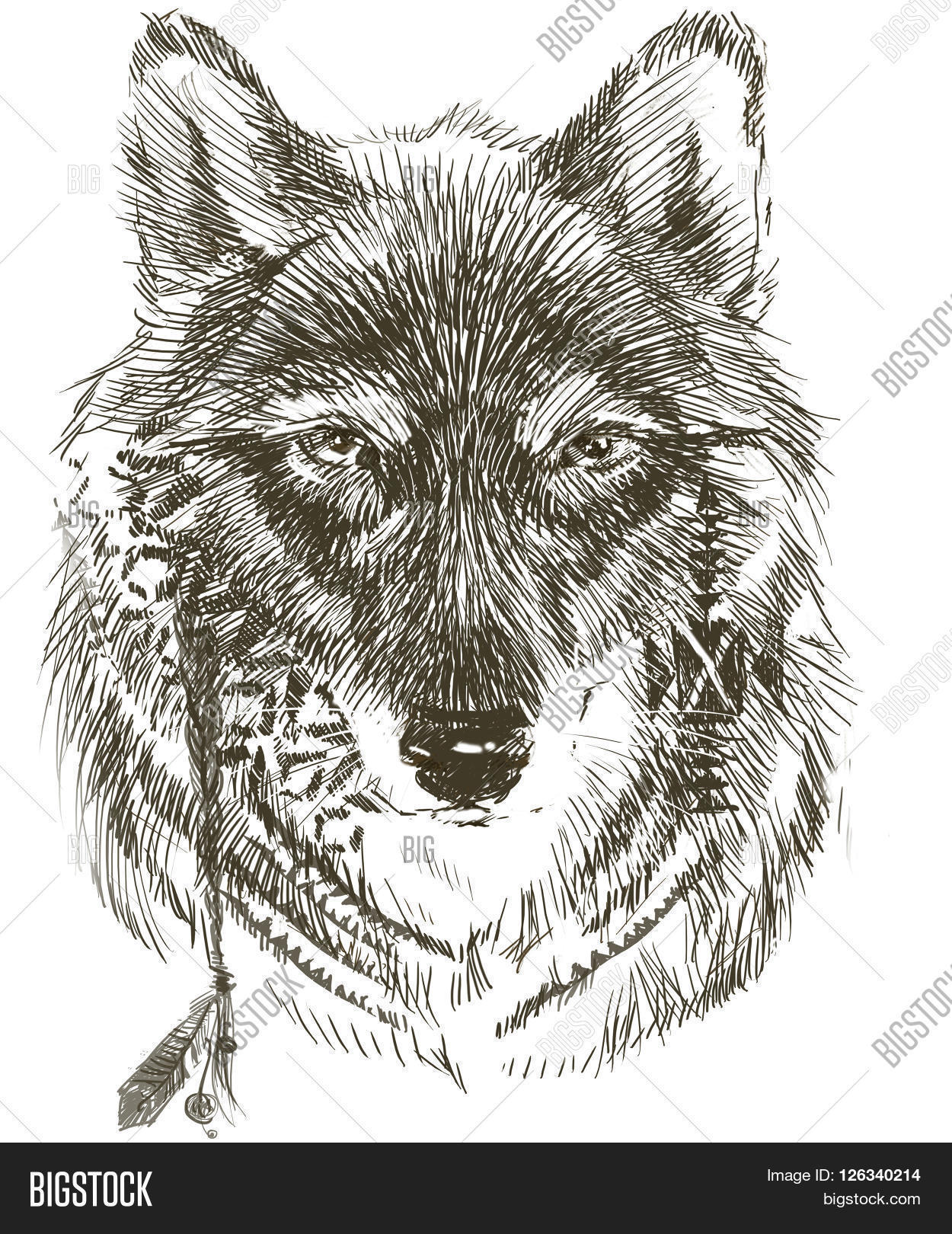 Wolf Wolf Indian Image Photo Free Trial Bigstock