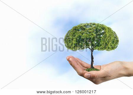 Green eco life