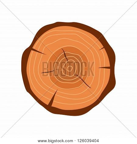 Cross section of tree stump in flat style isolated on white background. Tree trunk cross section natural cut wood slice circle timber ring. Vector illustration