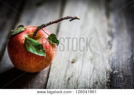 Image of Farm Raised Apples On Wooden Background