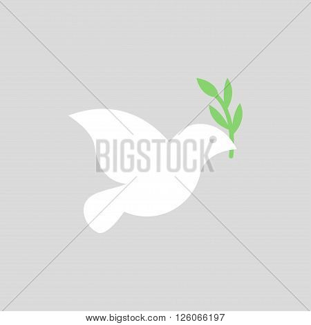 Vector white dove icon on grey background. Peace dove with olive branch.