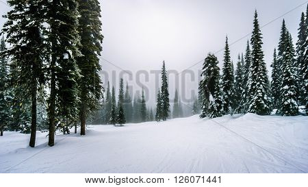 Ski slopes in the clouds and fog at Sun Peaks in the Shuswap Highlands in central British Columbia
