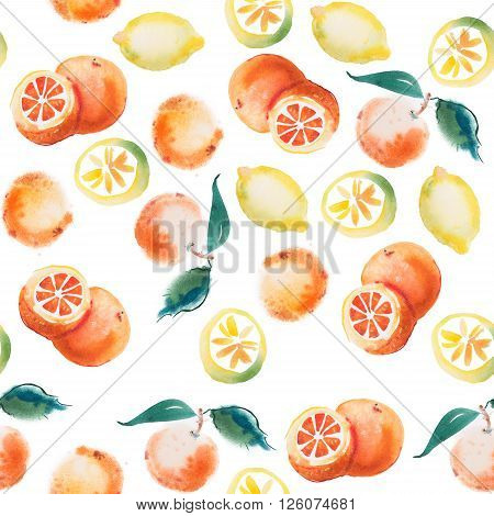 watercolor drawing set of tropical fruits, citrus aquarelle painting on white background.