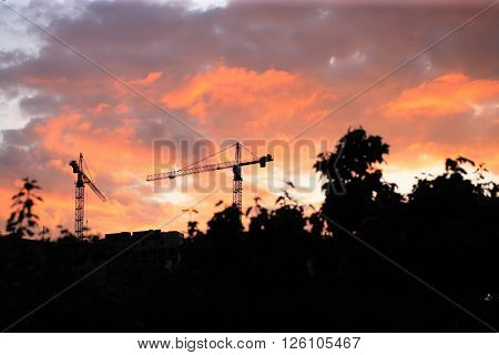 image of many Crane Tower on Sunset Sky Background