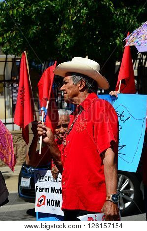 DELANO, CA - APRIL 17, 2016: An unidentified man, a long-time UFW member, joins the Cesar Chavez march for immigrants' and agricultural workers' rights.