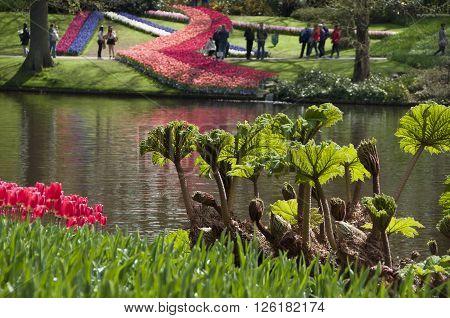 Keukenhof Gardens in Lisse The Netherlands capture I