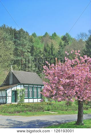 Springtime in Bergisches Land in Solingen at River Wupper,North Rhine Westphalia,Germany