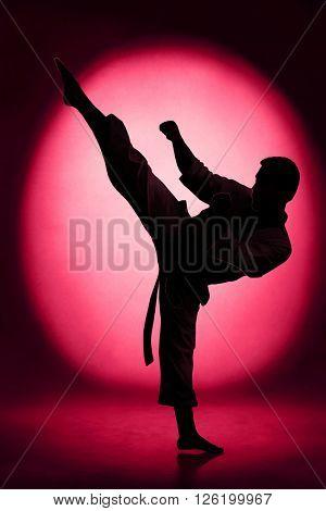 Silhouette of man karate kick