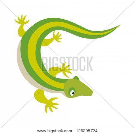 Green water dragon lizard nature animal reptile cartoon silhouette vector illustration.