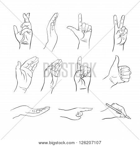 hands with different gestures, hands with different positions of fingers, open palms, indicating the direction of the hand, hand drawn vector elements